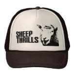 la oveja emociona el gorra
