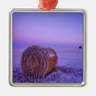 La paja del invierno embala cerca del norte del adorno cuadrado plateado