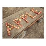 """La palabra """"manzana"""" en manzanas tarjeta postal"""