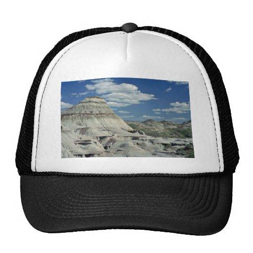 La paleta de los artistas gorras de camionero