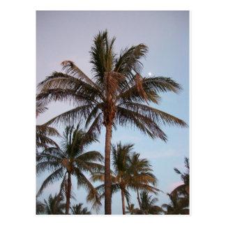 La palma consigue estada en la luna postales