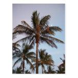 La palma consigue estada en la luna tarjetas postales