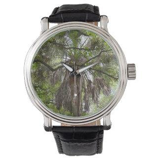 la palma del sabal a través del roble vivo relojes de pulsera
