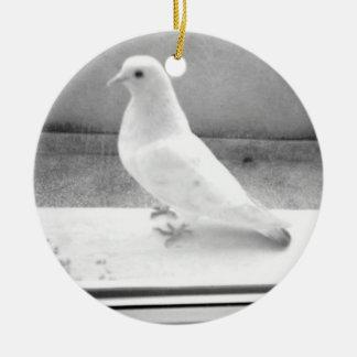La paloma del blanco adorno redondo de cerámica