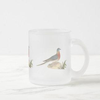 La paloma salvaje (migratoria del Ectopistes) Tazas De Café