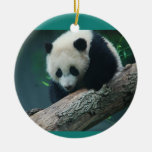 La panda gigante Cub de Bao Bao adorna Adorno Navideño Redondo De Cerámica