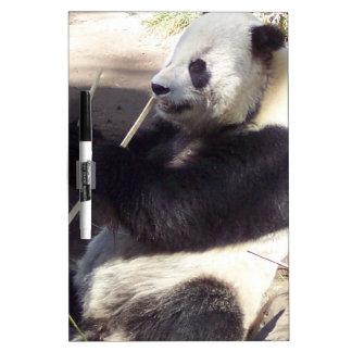 La panda más linda, nunca pizarra