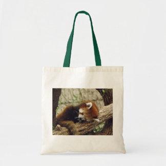 La panda roja el dormir lindo con la comida en ell bolsa