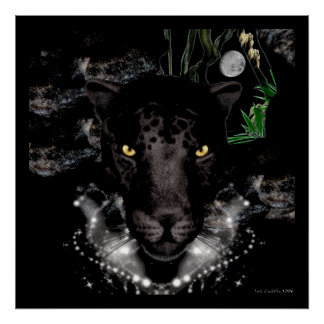La pantera negra póster