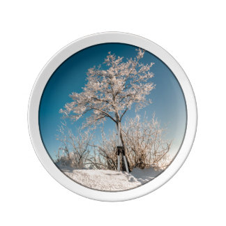 La parada del esquiador platos de cerámica