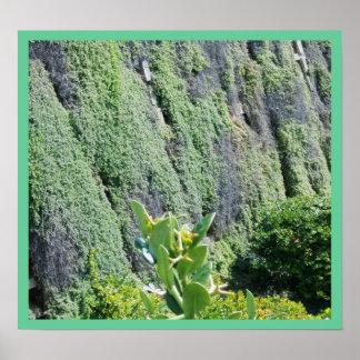 La pared verde póster