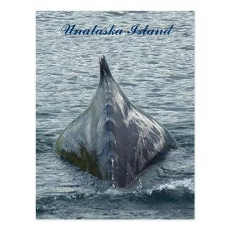 La parte posterior de una ballena en la bahía de postal
