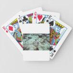 La pastinaca bluespotted o la pastinaca de Kuhl Baraja Cartas De Poker