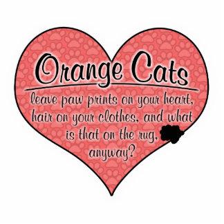 La pata anaranjada del gato imprime humor escultura fotografica