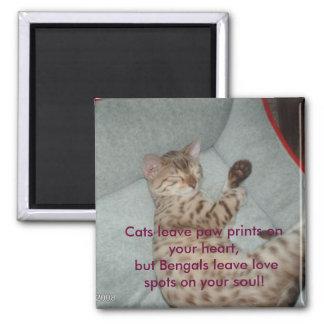 La pata de la licencia de los gatos imprime en su  imán de frigorifico