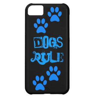 La pata de la regla de los perros imprime la caja
