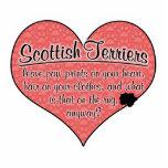 La pata de Terrier del escocés imprime humor del p Escultura Fotográfica