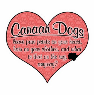 La pata del perro de Canaan imprime humor Adorno Fotoescultura