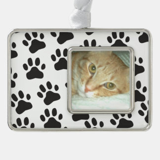 La pata personalizada de la foto del gato imprime
