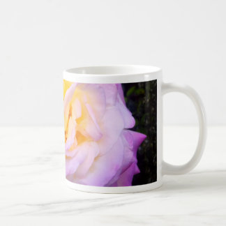 "La ""paz"" subió tazas de café"