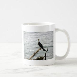 La pelusa de varios colores espera pescados tazas de café