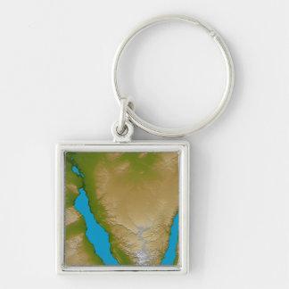 La península del Sinaí Llavero Cuadrado Plateado