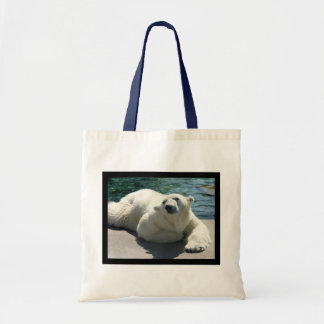 La pequeña bolsa de asas ártica del oso polar