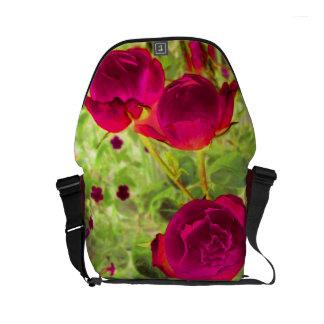 la pequeña bolsa de mensajero del carrito de los bolsa de mensajeria