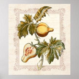 La pera dio fruto decoración de la cocina del país posters