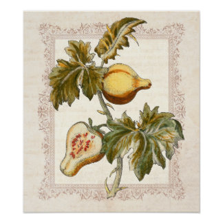 La pera dio fruto decoración de la cocina del país póster