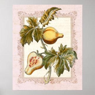 La pera dio fruto decoración de la moda del país d impresiones