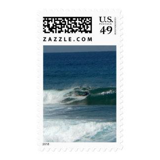 La persona que practica surf encendido ve sello
