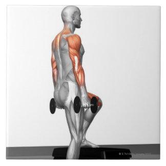 La pesa de gimnasia intensifica 2 azulejo cuadrado grande