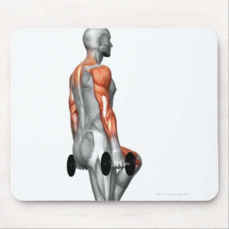 La pesa de gimnasia intensifica 2 tapetes de ratones