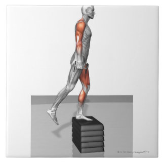 La pesa de gimnasia intensifica 4 azulejo cuadrado grande