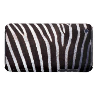 la piel de la cebra iPod touch Case-Mate carcasas