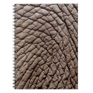 La piel del elefante africano (africana del Loxodo Libretas