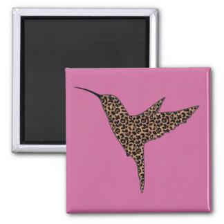 La piel del leopardo mancha el colibrí imán cuadrado