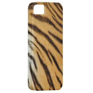 La piel real del tigre raya la caja del iPhone 5 iPhone 5 Funda
