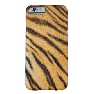 La piel real del tigre raya la caja del iPhone 6 Funda Para iPhone 6 Barely There
