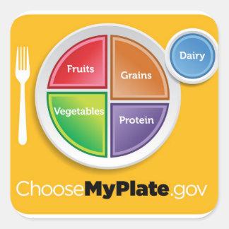 La pirámide de alimentación 2011 elige a mi calcomanías cuadradas