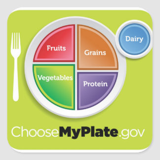 La pirámide de alimentación 2011 elige a mi calcomanías cuadradases