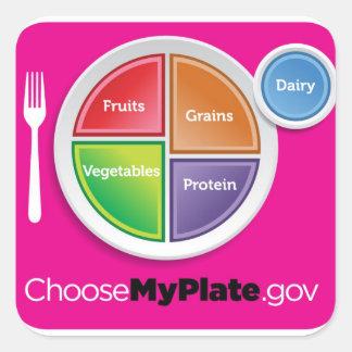 La pirámide de alimentación 2011 elige a mi calcomanía cuadrada