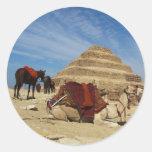 La pirámide de Djoser (Zoser) con el camello Pegatina Redonda