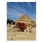 La pirámide de Djoser (Zoser) con el camello Tarjeta Postal