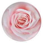 La placa color de rosa perfecta plato para fiesta