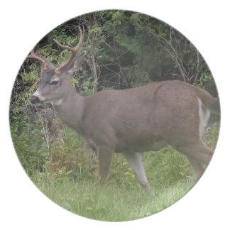 La placa de los ciervos plato de comida