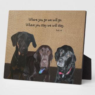 La placa del amante del perro
