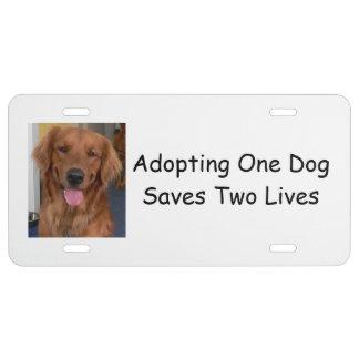 La placa del perro, adoptando uno ahorra dos placa de matrícula