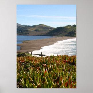 La planta de hielo, playa, agita (el retrato) póster